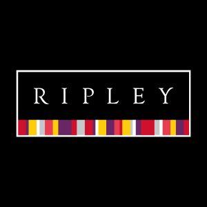 Las mejores tiendas online de comercio electrónico en el Perú - Ripley