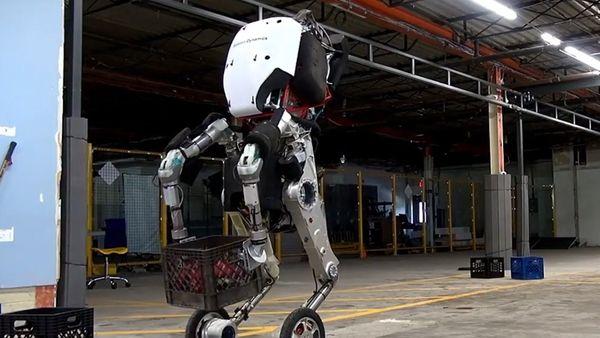 Handle muestra una elegancia inusual para un robot corpulento, puede descender por escaleras, saltar obstáculos y elevarse 48 pulgadas