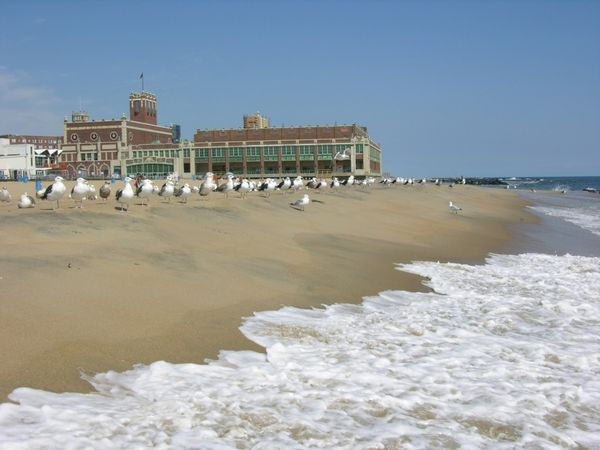 Cuenta con amplias y hermosas playas y también con gran variedad de actividades como surf, tiendas exclusivas y paseos recreativos (iStock)