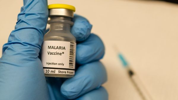 La OMS probará en tres países de Africa una nueva vacuna denominada RTS,S (iStock)