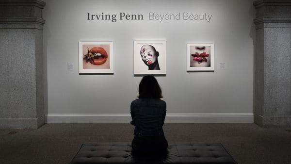 'Beyond Beauty' la exposicion del fotografo realizada en una de las galerias del MET de Nueva York.