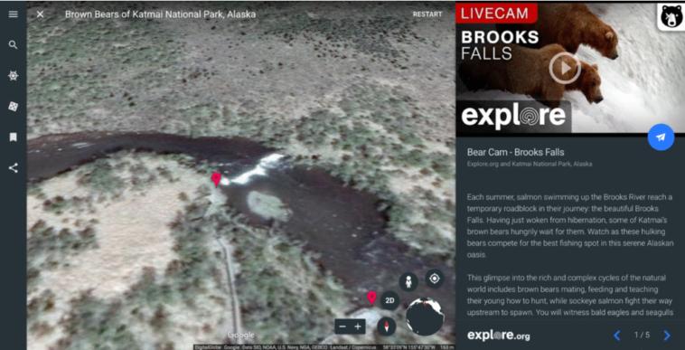 Vídeos de la naturaleza en directo desde Google Earth
